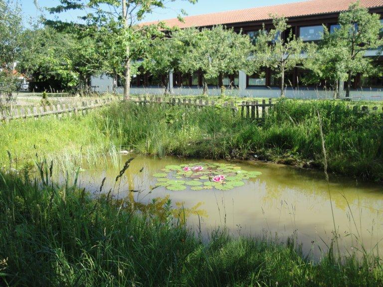 Schule Jesenwang 2